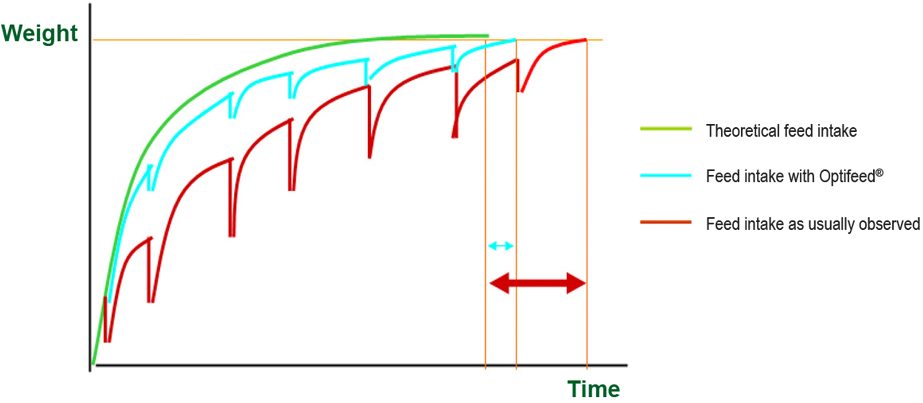 Olfactum Optifeed Piglet Weight Vs Time Graph